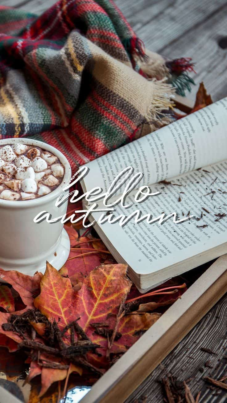 Hello Autumn Wallpaper.You can always make your iPhone look aesthetic with cute wallpapers, these 40 beautiful and aesthetic autumn fall wallpapers for your iPhone will make you feel that autumnal fall vibes.