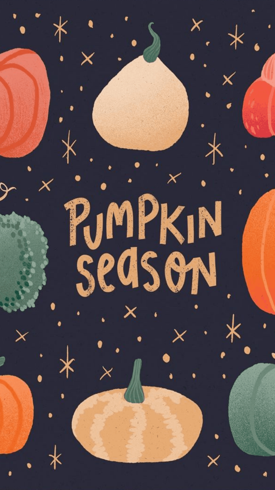 Pumpkin Season Wallpaper
