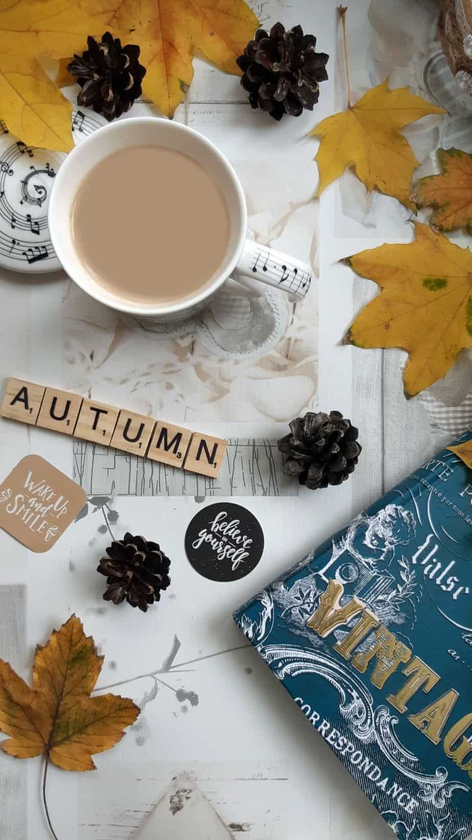 Vintage Autumn Wallpaper. You can always make your iPhone look aesthetic with cute wallpapers, these 40 beautiful and aesthetic autumn fall wallpapers for your iPhone will make you feel that autumnal fall vibes.