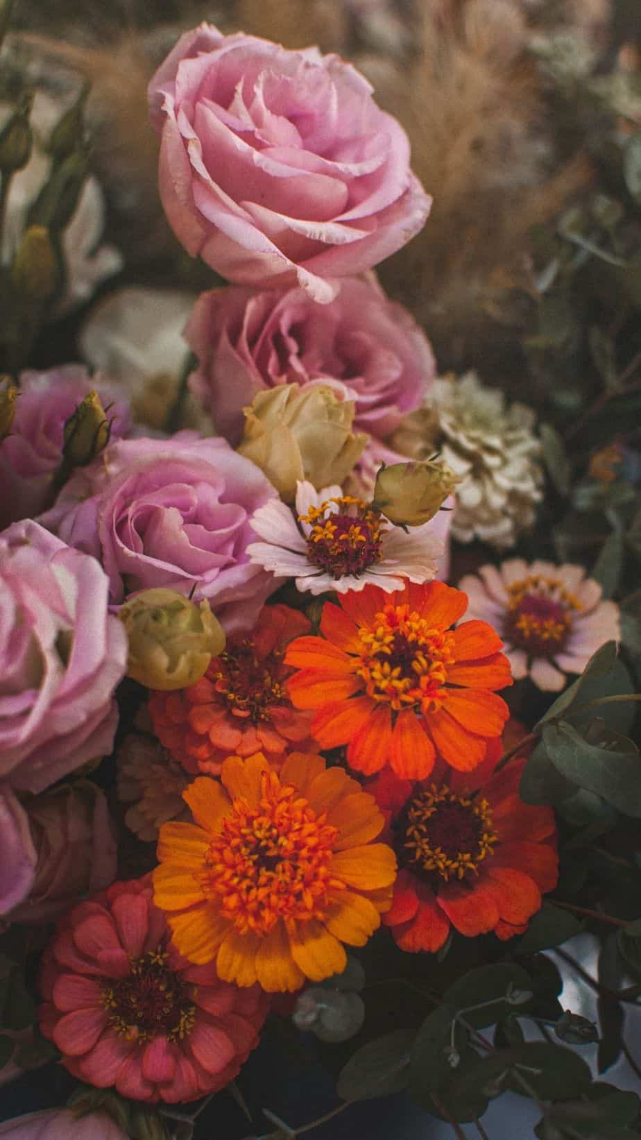 Fall Flowers Wallpaper.You can always make your iPhone look aesthetic with cute wallpapers, these 40 beautiful and aesthetic autumn fall wallpapers for your iPhone will make you feel that autumnal fall vibes.