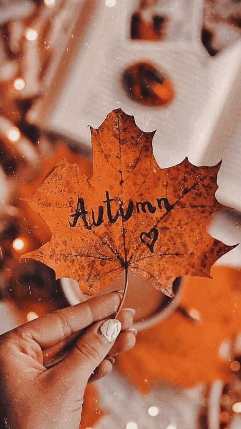 Autumn Wallpaper. You can always make your iPhone look aesthetic with cute wallpapers, these 40 beautiful and aesthetic autumn fall wallpapers for your iPhone will make you feel that autumnal fall vibes.